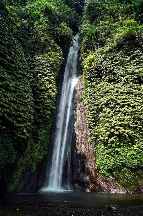 Cascada en la selva de Bali