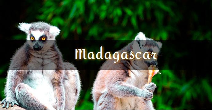 LA mejor gúia de viaje de Madagascar