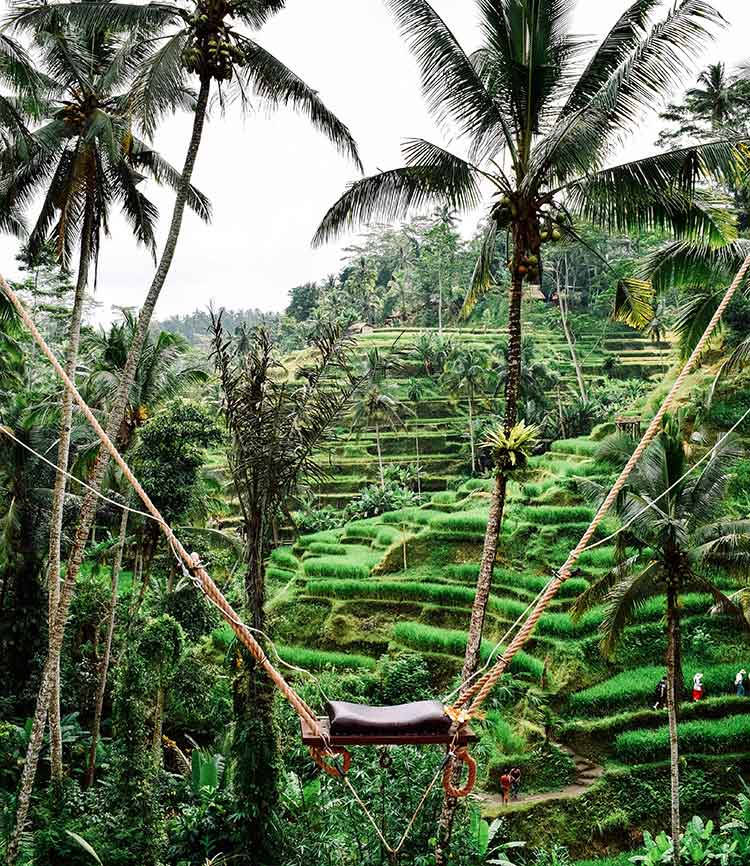 columpio wanagiri swing en Bali