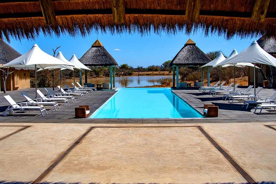 terraza de hotel de lujo en africa durante un safari
