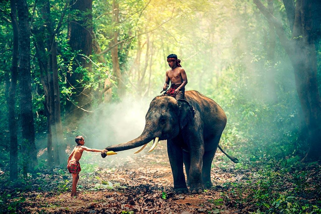 naturaleza-viaje-birmania